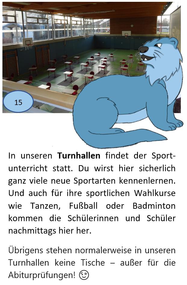 Bild + Text 15