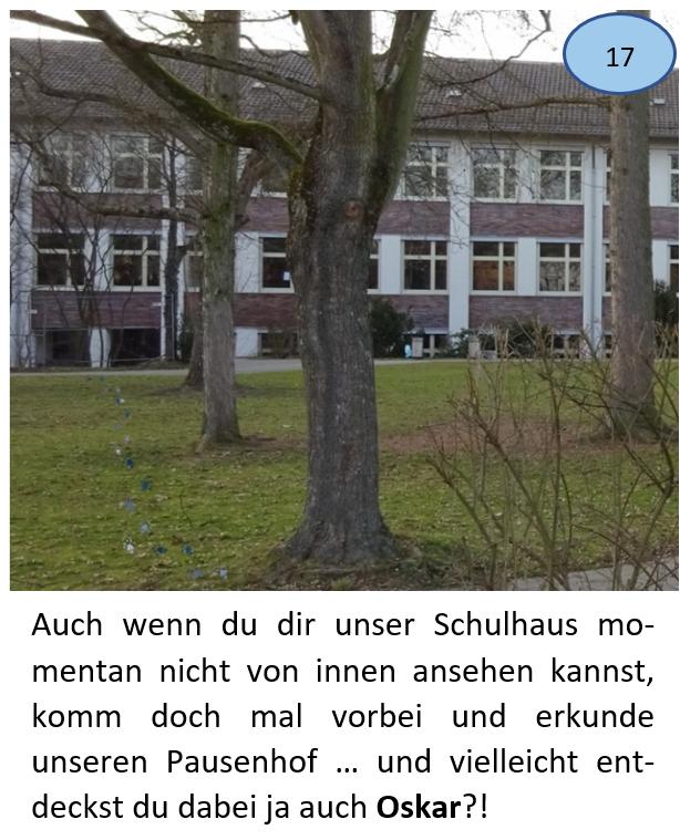 Bild + Text 17
