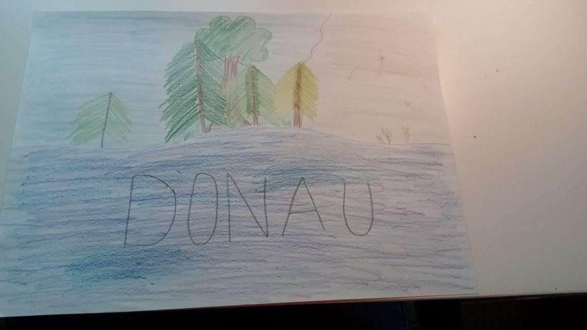Bild 15 - Donaubild 07