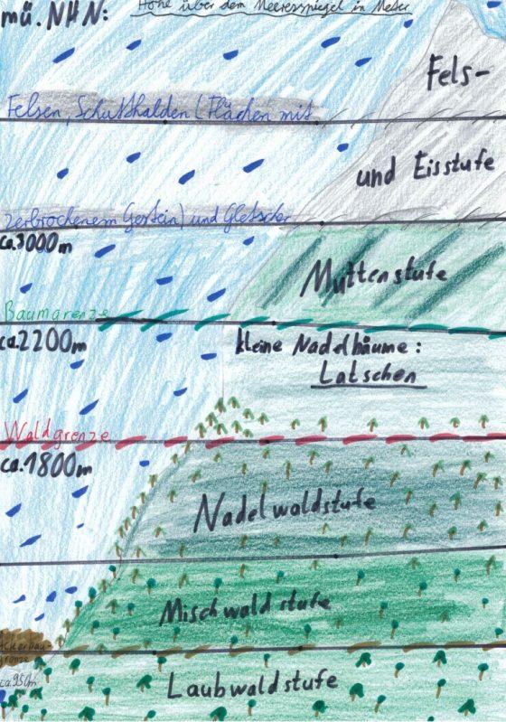 Bild 22 - Höhenstufen in den Alpen